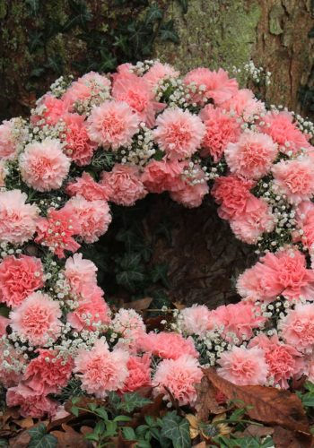 Pink carnations funeral flowers funeral preplanning options